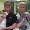 Maddie's Shelter Medicine Program Externs UF