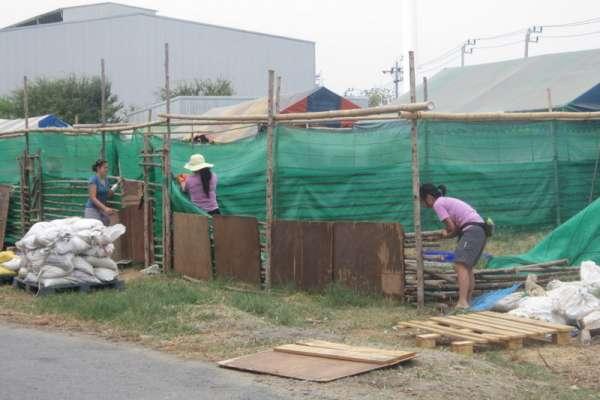 Disassembling the bamboo shelter runs