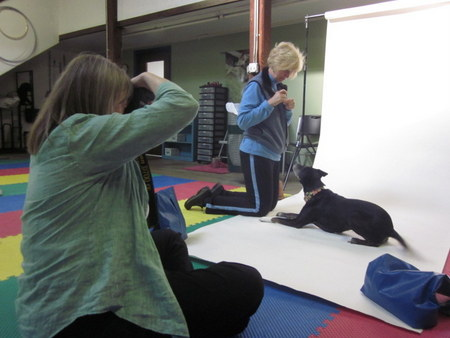 Sarah Babcock taking a photograph of Olive, one of the students at the School for Dogs, and her handler Joanne Rothschild.