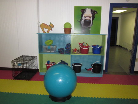 School for Dogs play area