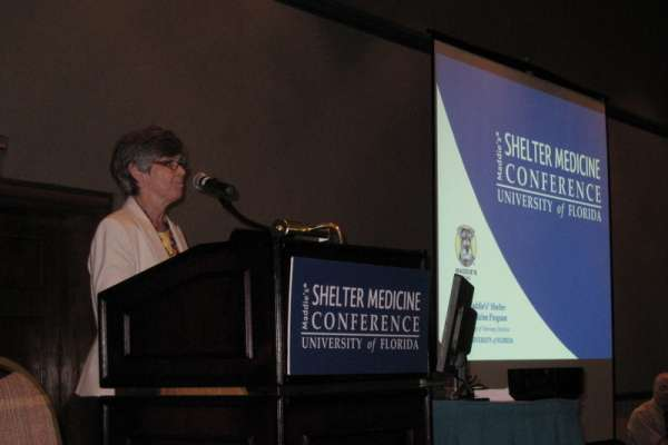Dr. Cynda Crawford welcomed attendees.