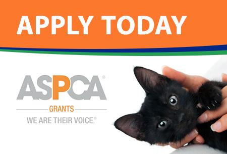 ASPCA Scholarship