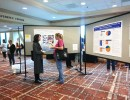Attendees browse posters in the exhibition hall at the 2013 Shelter Medicine Conference