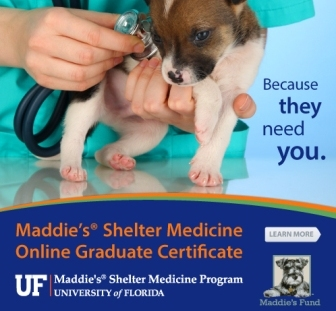 Maddie's Online Graduate Certificate in Shelter Medicine