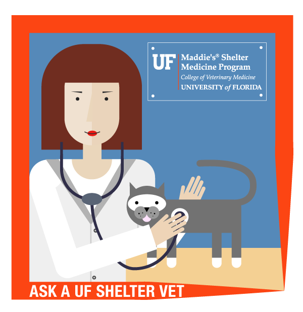 ask-a-shelter-vet-art-600