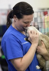 Dr. Cate McManus takes a moment with a cat rescued from a failed sanctuary. He was one of hundreds.