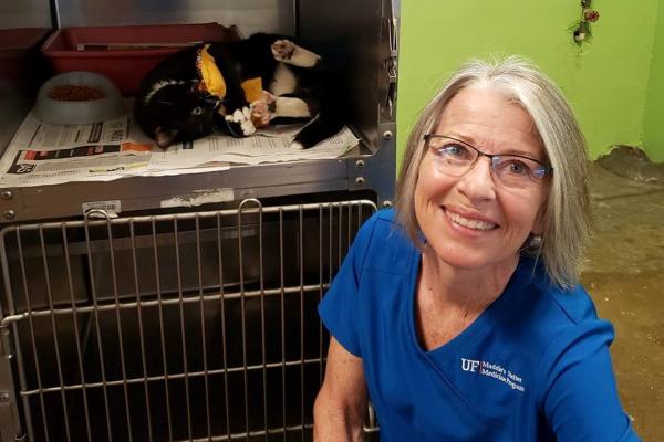 Dante enjoying his catnip pillow with Sarah Kirk, at the San Juan municipal shelter