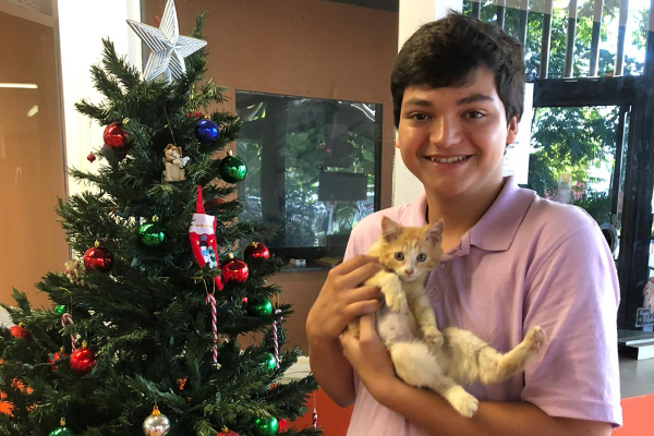boy holding kitten in fromt of christmas tree