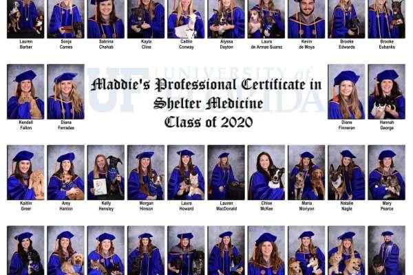 2020 Shelter Med grads