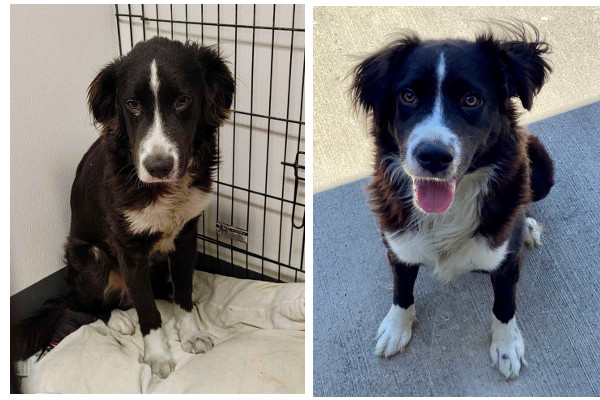 Murph Before and After