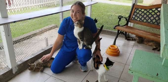 Dr. Mielo in the brand-new catio at the Villa Michelle Albergue Animales in Mayagúez, Puerto Rico.