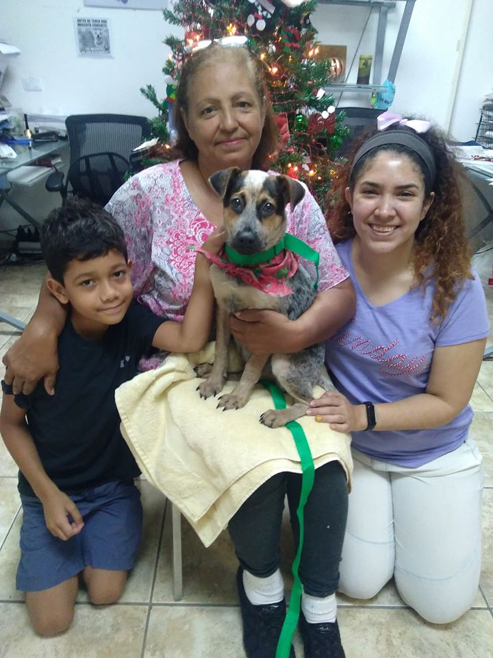Family and their newly adopted pet from the Humane Society of Puerto Rico