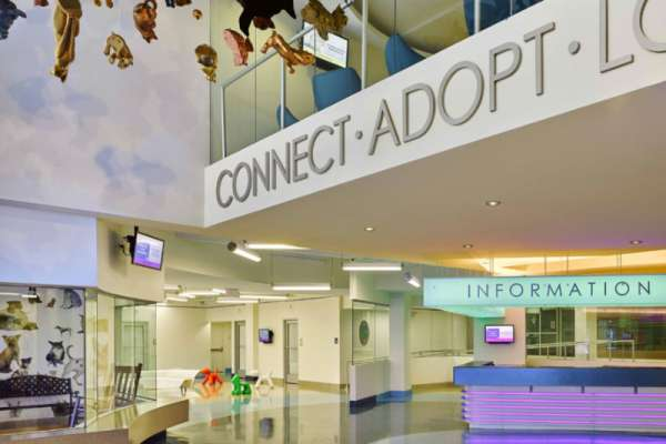 Miami-Dade Animal Services Lobby