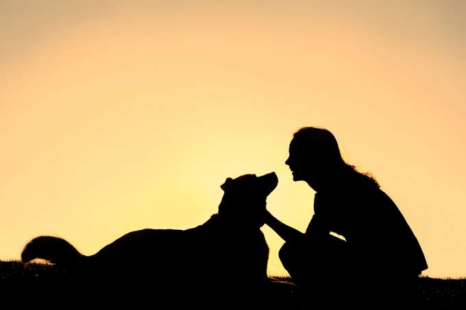 A silhouette of a happy smiling girl lovingly petting her German Shepherd dog isolated against a sunset in the sky.