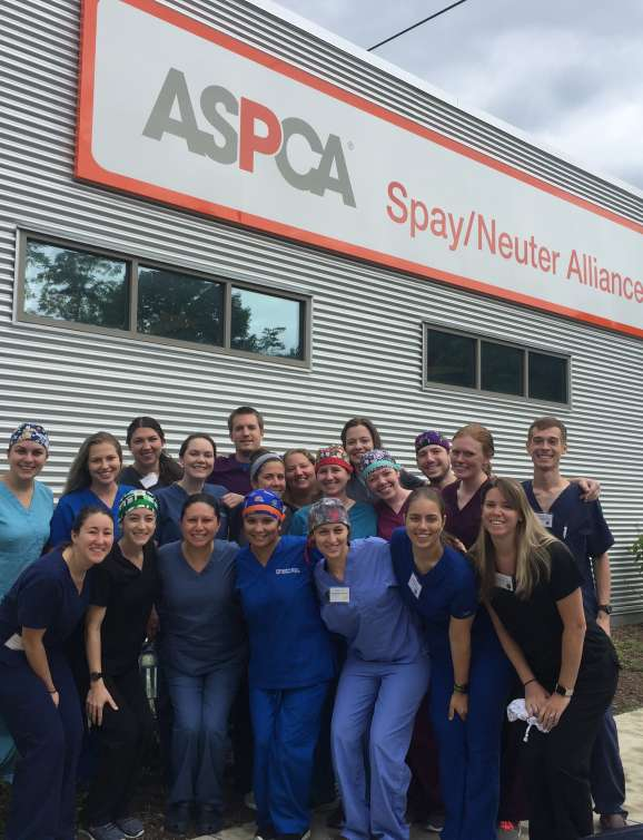 Group of students at ASPCA
