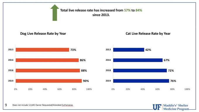 Total Live Release Rate 2019