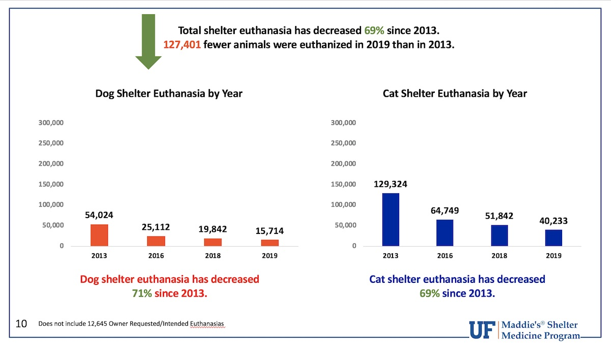 Total Shelter Euthanasia Rate 2019