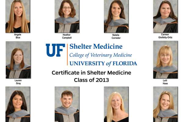 Shelter Medicine Certificate Class of 2013