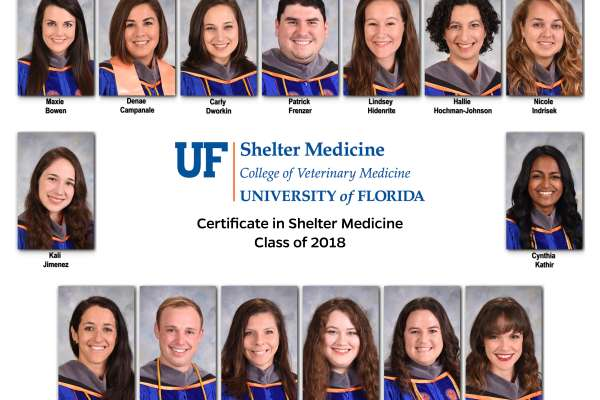 Shelter Medicine Certificate Class of 2018