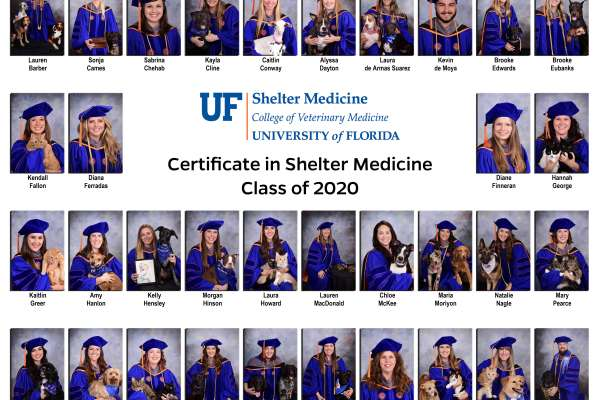 Shelter Medicine Certificate Class of 2020