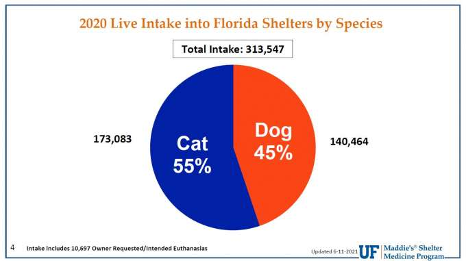 2020 Live Intake into Florida shelters Pie Chart by Species, dog or cat. 55% cat intake and 45% dog intake of 312,157 total intake.