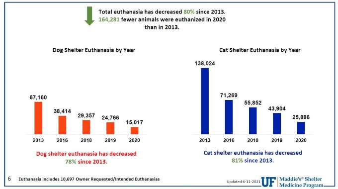 Total Euthanasia Bar Chart by Year and Species, dog or cat, showing a steady decline from 2013 to 2020.