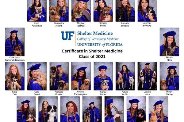 Professional Certificate in Shelter medicine Class of 2021 composite